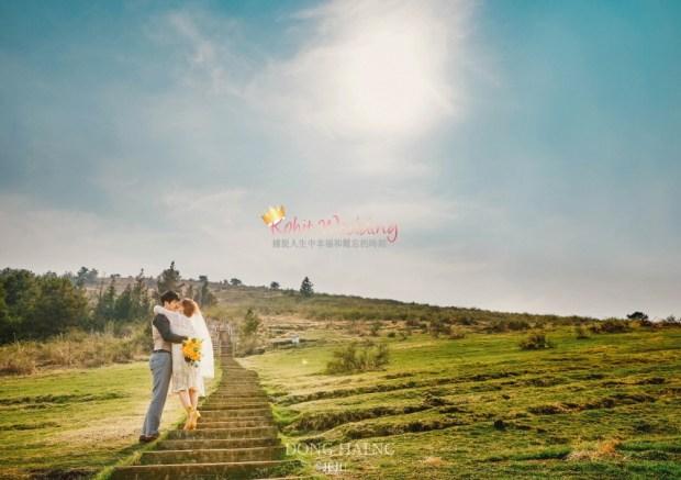 Camelias Jeju pre wedding photo 21