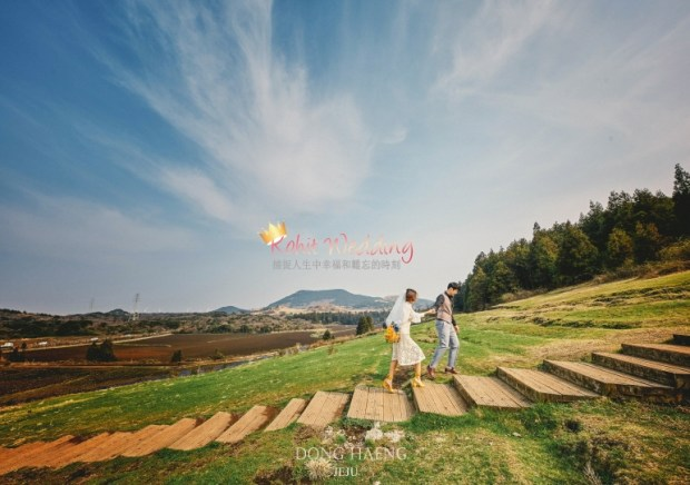 Camelias Jeju pre wedding photo 42