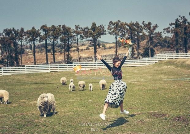 Camelias Jeju pre wedding photo 8