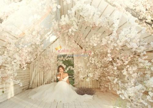 Korean Pre Wedding -Camelias in Seoul 46