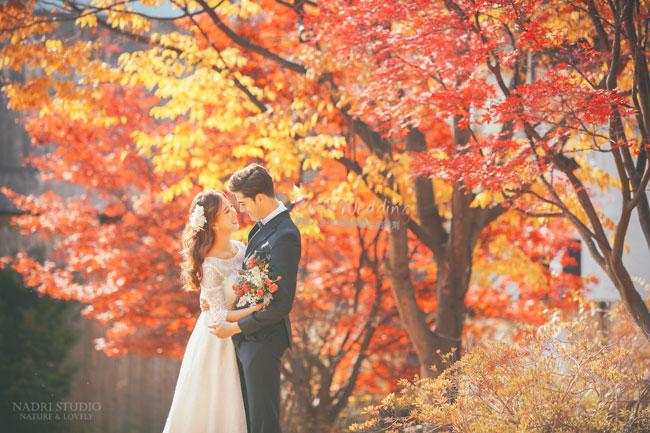 fall-(10)