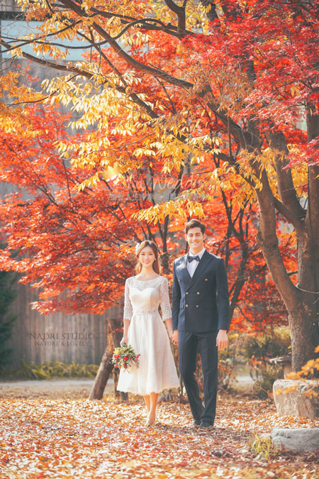 fall-(16)