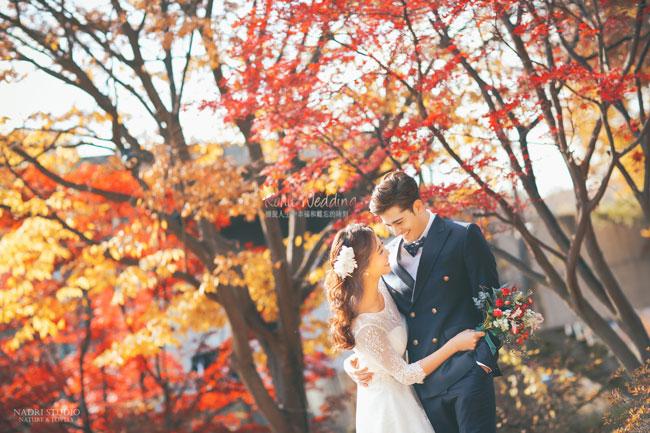 fall-(2)
