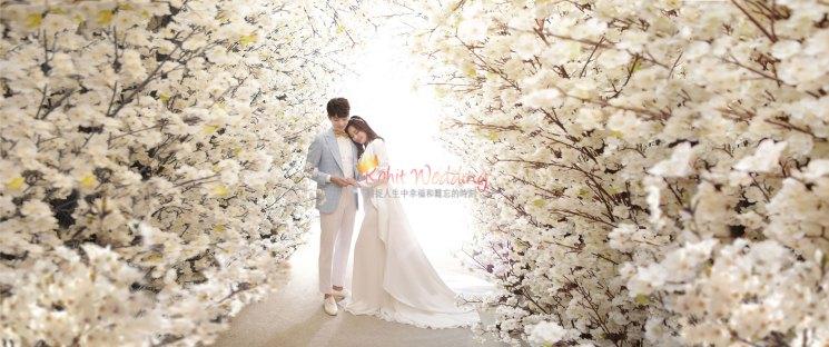 Korea Pre Wedding Photo 25