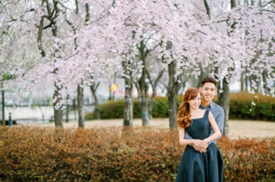 Kohit Wedding Korea Pre Wedding Photoshoot Nadri