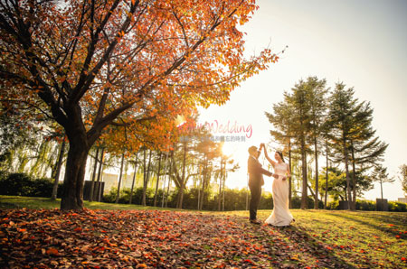 Fall leaves korea pre wedding