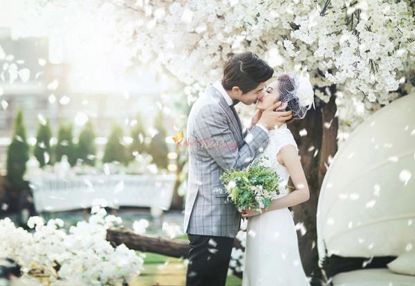 May Studio Korea Pre Wedding Kohit Wedding 35-1
