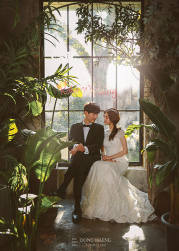 Korea pre wedding photography kohit wedding 73
