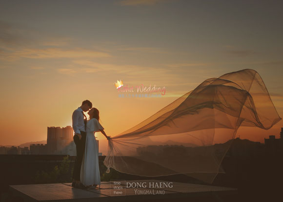Korea pre wedding photography kohit wedding 75