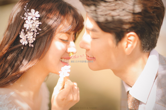 kohit-wedding-korea-pre-wedding-cherry-blossom-1