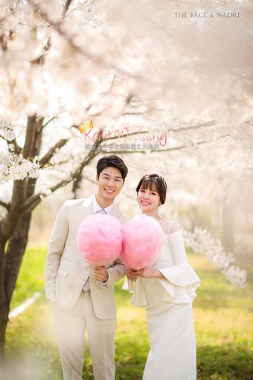 kohit-wedding-korea-pre-wedding-cherry-blossom-22