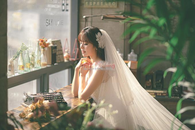Kohit wedding prewedding in Korea - Nadri studio 17
