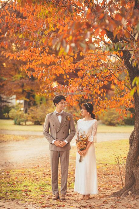 Kohit wedding prewedding in Korea - Nadri studio 61