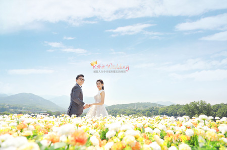 Nadri Studio koreaprewedding kohit wedding