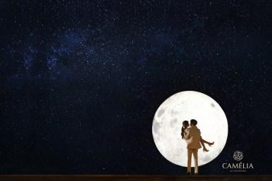 Chungdam Studio- Camelia Korea prewedding photos Kohit Wedding