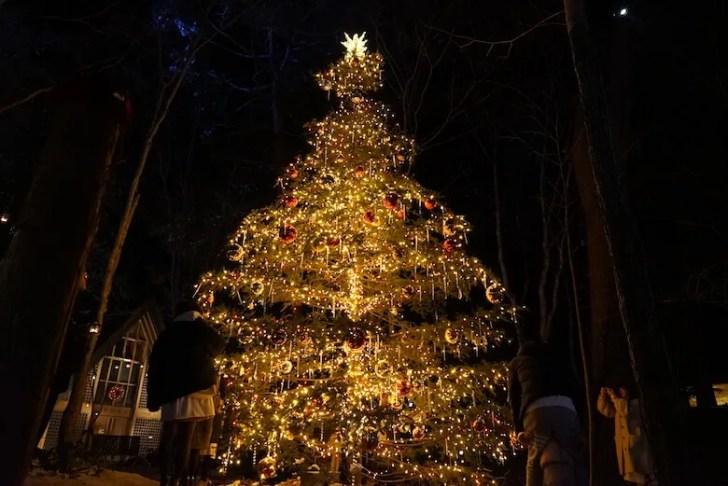 軽井沢Longing Houseのクリスマス,協会イルミネーション