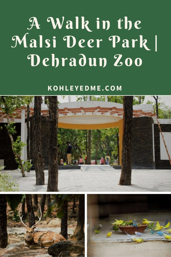 Malsi Deer Park Dehradun Zoo Pinterest