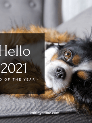 word of the year 2021 woty2021 relaxed dog in a coach
