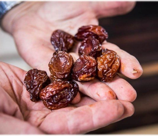 dried plums will cure you from stomach cancer