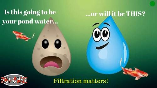 small resolution of understanding koi pond filtration