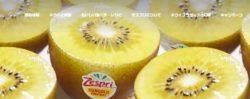 Web キャプチャ 25 8 2021 204819 www.zespri.com  e1629892128652 - Web キャプチャ_25-8-2021_204819_www.zespri.com