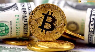 bitcoin-in-dolarin-yerine-gecebilmesi-icin-kac-para-olmasi-gerekiyor-1533288977