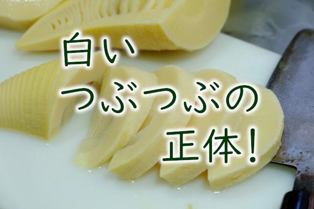 タケノコ水煮