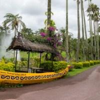 雨の日にオススメな東南植物楽園  2015 | 沖縄県沖縄市