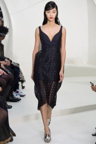 christian-dior-spring-2014-couture-12_115155653996