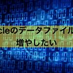 【Oracle】データファイルの上限数を変更する