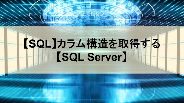 【SQL】カラム構造を取得する【SQL Server】