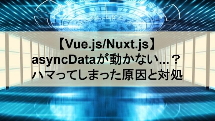 【Vue.js/Nuxt.js】asyncDataが動かない…?ハマってしまった原因と対処