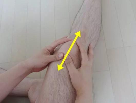 膝蓋骨の解剖、その役割と可動性。お皿はどれぐらい動くのか?14