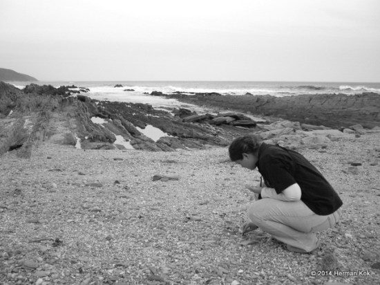 Picking up seashells