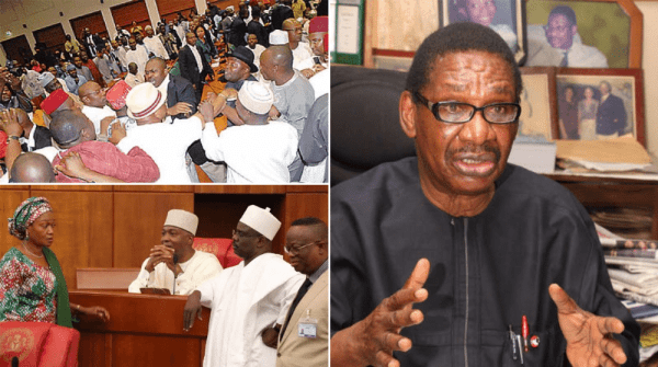 Ekiti Election: Sagay Advises Fayose To Move On...Warns Him Against Going To Court 1