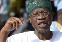 Xenophobia: Lai Mohammed Says Nigerians Attack On South African Businesses In Nigeria Is Deeply Disturbing