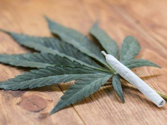 Latest! UN Urges Nigeria To Legalise The Use Of Cannabis 1