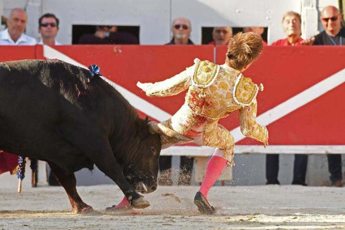 Shocking Moment Bullfighter Andy Younes Is Gorged By A Raging Bull 1