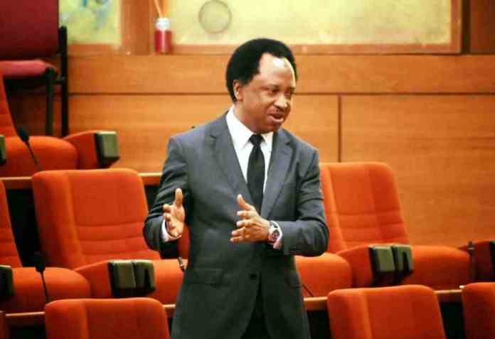 Shots Fired! Shehu Sani Reveals What Most Governors Do While Their States Are In Flames 1