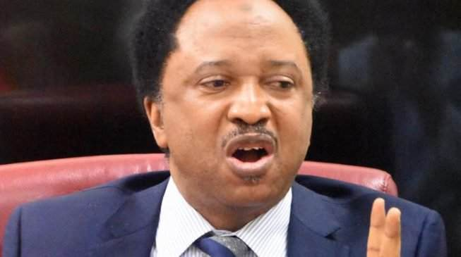 You Lose An Election When It Is Free And Fair, I Was Robbed - Shehu Sani 1