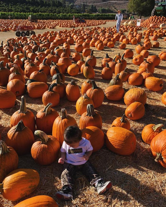 Family Goals: Kylie Jenner And Travis Scott Takes Stormi Webster For Her First Pumpkin Patch 3
