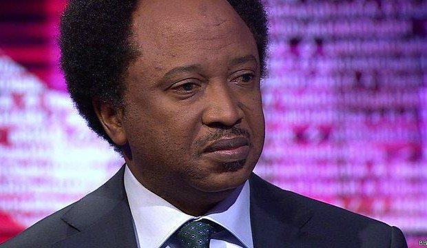 APC Will Crumble After Buhari Leaves - Shehu Sani 3