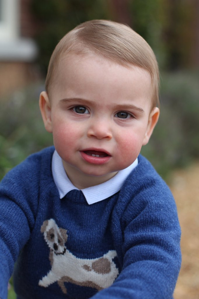 Royal Family Releases Rare New Photos Of Prince Louis As He Celebrates His First Birthday 3