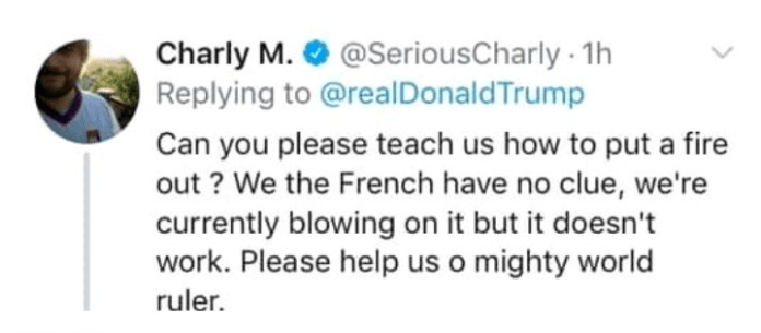 Donald Trump Mocked By The People Of France After Insensitive Notre Dame Comment 8