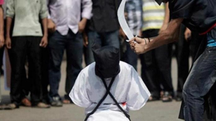 Alleged Drug Trafficking: FG Secures The Release Of Zainab Habibu From Saudi Arabia 2