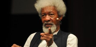 "Hate Speech Bill: ""Your Motives Are Dubious"", Wole Soyinka Slams FG"