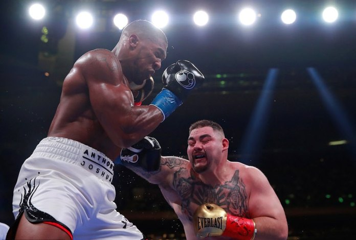 Anthony Joshua Panicked And Froze Before Andy Ruiz Jr Fight - WBC Champion Deontay Wilder 2