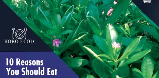 Food: 10 Reasons You Should Eat Waterleaf More