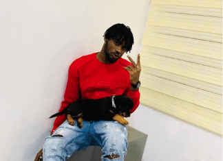 Lobatan!DJ 4kerty Names His Dog Tacha, Zlatan And TeeBillz React