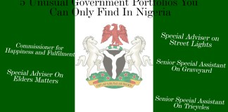 5 Unusual Government Portfolios You Can Only Find In Nigeria